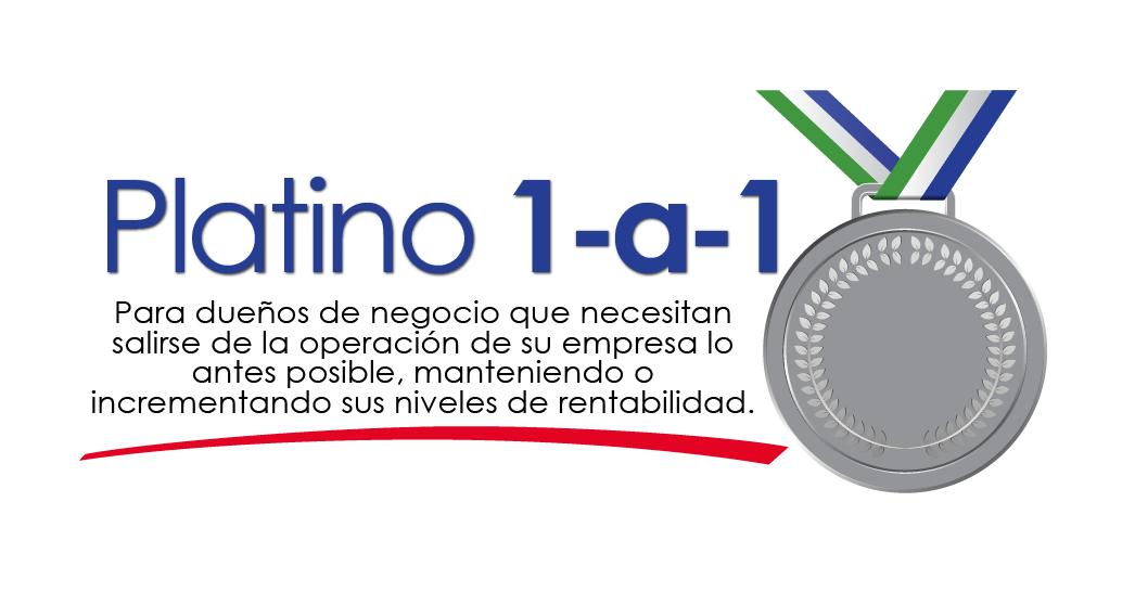 logo platino 1 a 1